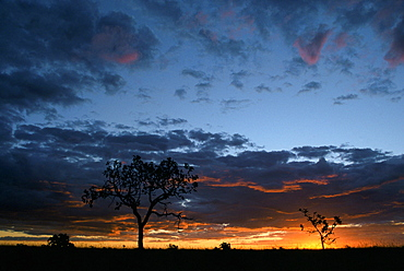 Sunset near Emas National Park in Mato Grosso Do Sul state, west-central Brazil.