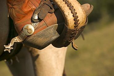 Detail shot of a cowboy spur.