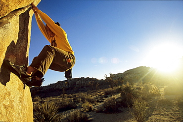 Dana Ikeda boulders The Tube in Joshua tree national park with the sun at sunset bursting behind her.