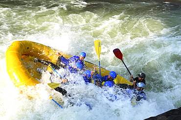 Whitewater rafters on the Upper Gauley River near Summersville, WV.