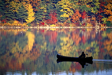 Man leisurely fishing from canoe during peak foliage on Walden Pond, Concord, Massachusetts.