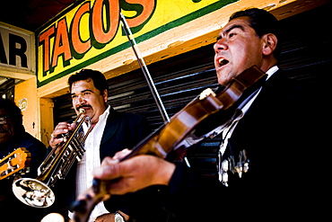 Mariachis play in Tijuana, BC, Mexico.