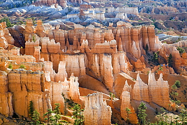 Bryce Amphitheater as seen from the Rim Trail near Sunset Point in Bryce Canyon National Park, Utah.