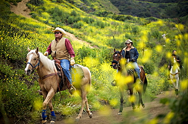Riders on horseback make their way along a trail lined with blooming wildflowers at Griffith Park in Los Angeles, California.
