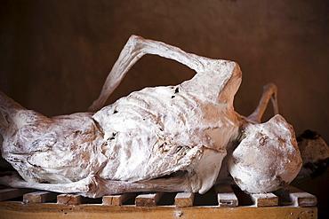 Bodies on display at the Murambi Genocide Memorial near Gikongoro in southern Rwanda.