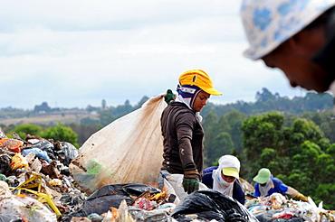 Garbage recycling in Brasilia, Brazil.