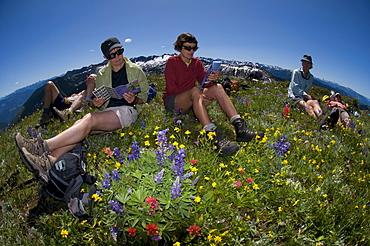 Summer trekking near Ruby Creek Lodge. Valhallas. New Denver, British Columbia, Canada