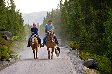 Horseback riders ride through a forested section near the northern end of the Medicine Bow Rail Trail that winds through the Medicine Bow National Forest outside of Laramie, Wyoming