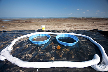 Decontaminate pools along the beach at Grand Terre Island that the clean up crews wash their boots off in at the end of each day. These were left for the night at the end of a shift at 2PM.