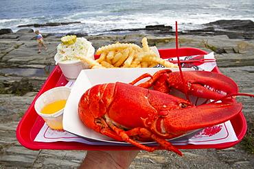 Coastal life in Maine.