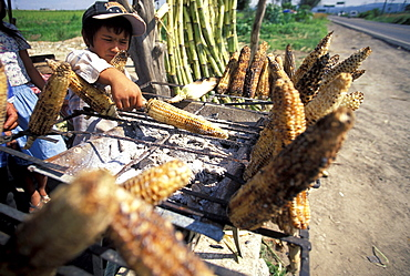 A young boy grills corn to sell by the road outside of Guadalajara, Mexico.