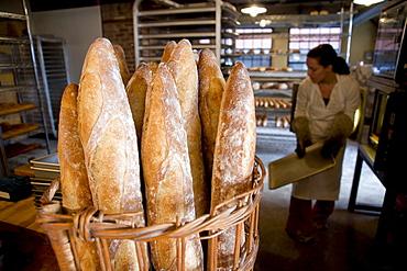 Standard Bread in Portland, Maine