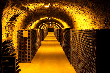 Chamgagne caves in Cote des Blancs, Champagne, France.