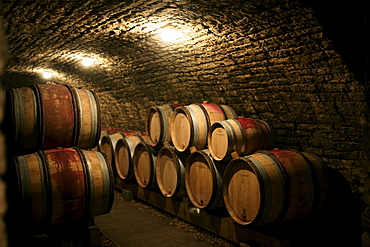 Aging pinot noir in the Cote-de-Nuits, Burgundy, France.