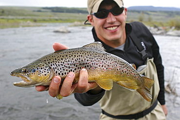 Brett Seng hods out a Rainbow Trout caught on the Madison river in Montana.