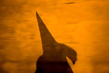A penitent's shadow is cast on a wall during a late night Holy Week procession in the town of Espera in southern Spain's Cadiz Sierra region in Andalucia, March 19, 2008. Easter processions in Andalucia during Holy Week are a public display of Catholic imagery which tells the story of Jesus Christs' arrest, death and resurrection.