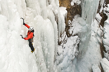 A woman ice climbing up a vertical wall in the Ouray Ice Park, Ouray, Colorado.