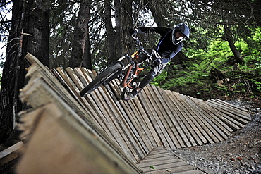Downhill mountain biker rides the Big Spruce Trail at Alyeska Resort in Girdwood, Alaska June 2011.
