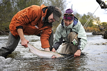 Fishermen with wild steelhead fished on Deep Creek on the Western Kenai Peninsula, Alaska September 2009.  Flowing into Cook Inlet north of Homer, the waters of Deep Creek and the Anchor River host late fall runs of wild steelhead.