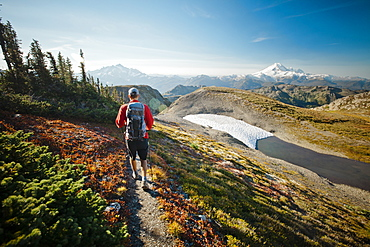 A hiker walks along a trail in North Cascades National Park, North Cascades National Park, Washington, United States