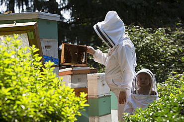 Mother and daughter beekeepers in beekeeping suits checking beehives, Huntingdon Valley, Pennsylvania, United States