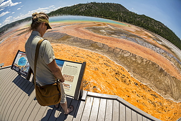 A woman reading an interperative sign while hiking along the boardwalk next to the Grand Prismatic Springs , a thermal hot spring in Yellowstone National Park, Wyoming, Yellowstone, Wyoming, usa
