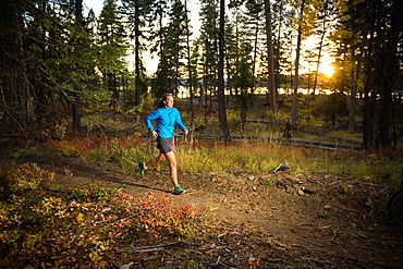Female trail runner on the HuckleBerry Bay Trail at sunset in Ponderosa State Park, McCall, Idaho, McCall, ID, USA
