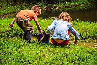A boy and girl explore the edge of a pond in Oxford OH