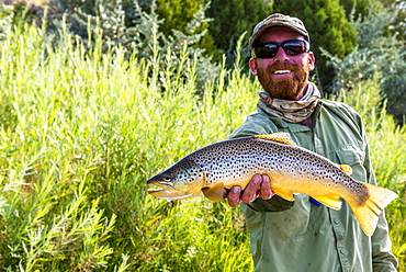 A male guide with a nice Brown on the Green River, UT