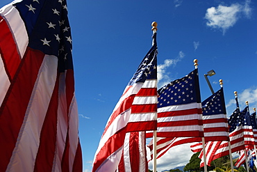 American flags blowing in the breeze.
