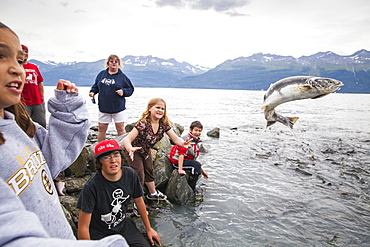 Children catch and throw salmon over the access gate at the Salomon Gulch Hatchery near Valdez, Alaska. The gate opens and closes on a schedule to regulate the return of salmon to the hatchery.