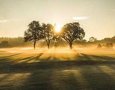 Sunrise on a golf course