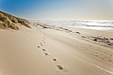 Footprints in the sand on Bullards Beach, Bullards Beach State Park, Oregon.