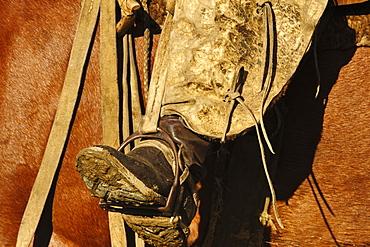 Gaucho riding horse in Patagonia, Argentina