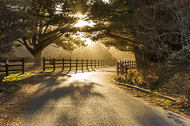 A country road on sunset near Big Sur, California