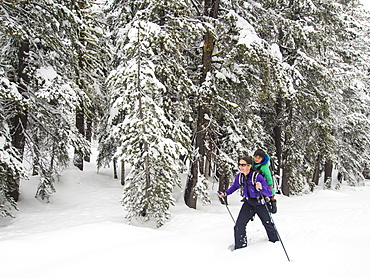 Mom and son snowshoeing toward the the Peter Grubb Hut, Sierra Nevada