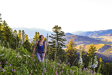Woman hikes through a field of wildflowers in Montana's Gallatin National Forest
