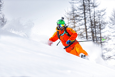 a man turns with his telemark skis in a beautiful wood in the west italian alps