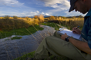 November 12, 2008 Mt Shasta and the Shasta River, Big Springs ranch, CA Carson Jeffres Staff Research Associate for UC Davis Center for watershed Sciences, conducting research in the Shasta River where it runs through Big Springs Ranch about 20 miles north of the town of Mt Shasta. The Shasta River and its tributaries create one of the most important spawning nurseries for Chinook salmon in the entire Klamath Basin. The ranch is contributing to degraded habitat conditions, which actually warm water temps by upwards of 10 degrees as the river passes through the ranch and then spills into the Klameth River.This stretch of river is a very fertile juvenile salmon rearing area and that there are a surprising number of returning salmon in spite of habitat degraded by grazing cattle and bad irrigation practices, United States of America