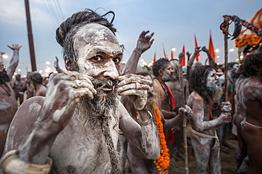 Sadhus or holy men during Kumbh Mela, Allahabad, Uttar Pradesh, India.