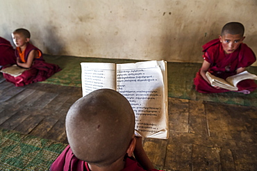 Young monks in a monastery school in Likir, Ladakh, India.