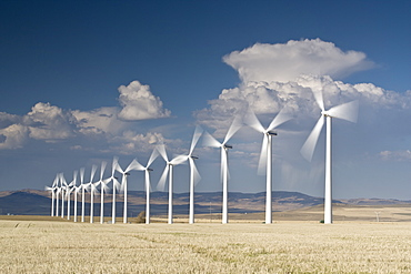 Electricity generating wind turbines