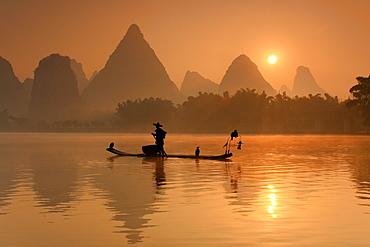 Chinese fisherman fishing in Li Jang River with cormorant birds, Guilin