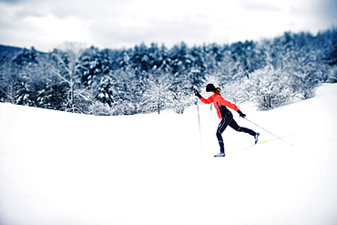Cross-country skier on a snowy, cloudy winter day, Hanover, New Hampshire.