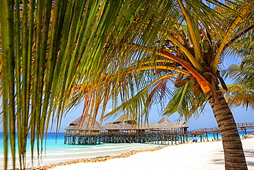 Tanzania, Zanzibar Archipelago, Unguja island (Zanzibar), Nungwi