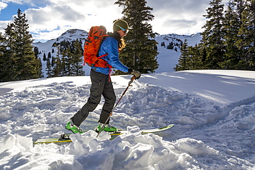A woman backcountry skiing on Red Mountain Pass, Silverton, Colorado.