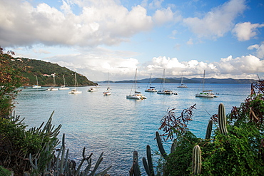 Sailboats anchored in a quiet cove of the Caribbean islands.