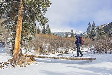 Crossing a small bridge over a frozen creek, Mt. Evans Wilderness, Colorado, United States of America