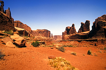 Needles section, Canyonlands National Park