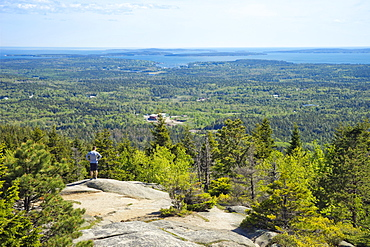Man on the top of Beech Mountain, Acadia National Park, Maine
